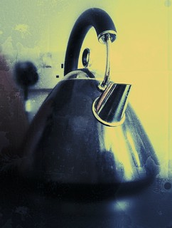 Day 117 of Project 365: The Kettle and I | by cygnoir
