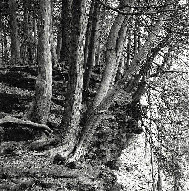 On the Edge of the Escarpment