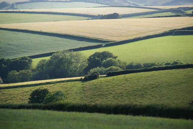 Rolling Devon fields