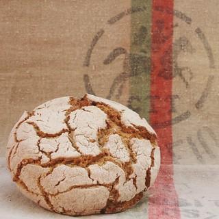 Broa de milho  - Corn Bread   by M Cruz