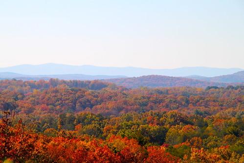 autumn fall leaves canon georgia sigma change dahlonega jnd jemel jndiii