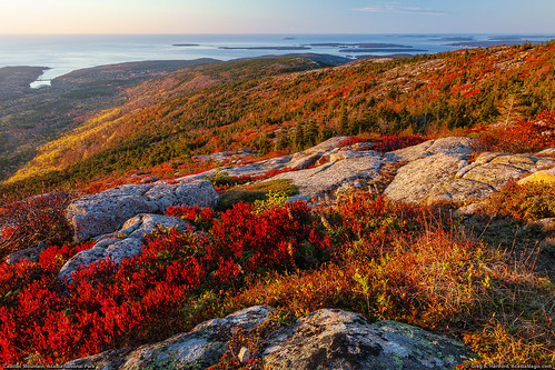 autumn fall sunrise landscape golden nationalpark horizon maine newengland glacier erosion granite barharbormaine acadia barharbor redleaves acadianationalpark fallseason autumnseason glacieraction