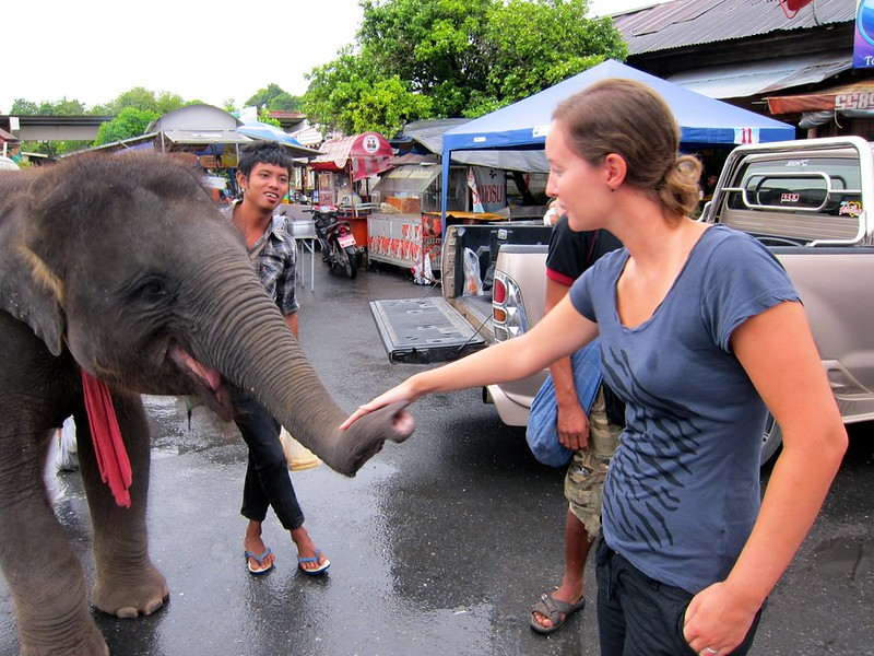 just another afternoon in Thailand