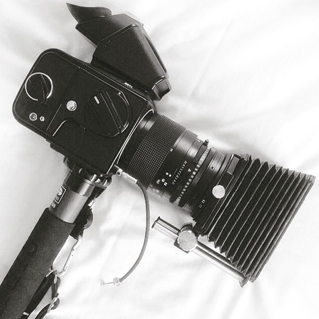 My Hasselblad Rig! 📷😁 #hasselblad501c #hasselblad #zeiss #zeissplanar #hasselbladlove #6x6 #cameraporn #sirui #monopod #120 #mediumformat #film #lovefilm #ishootfilm #bellows #camera #filmcamera #filmforever #filmphotographer #cameragear www.M