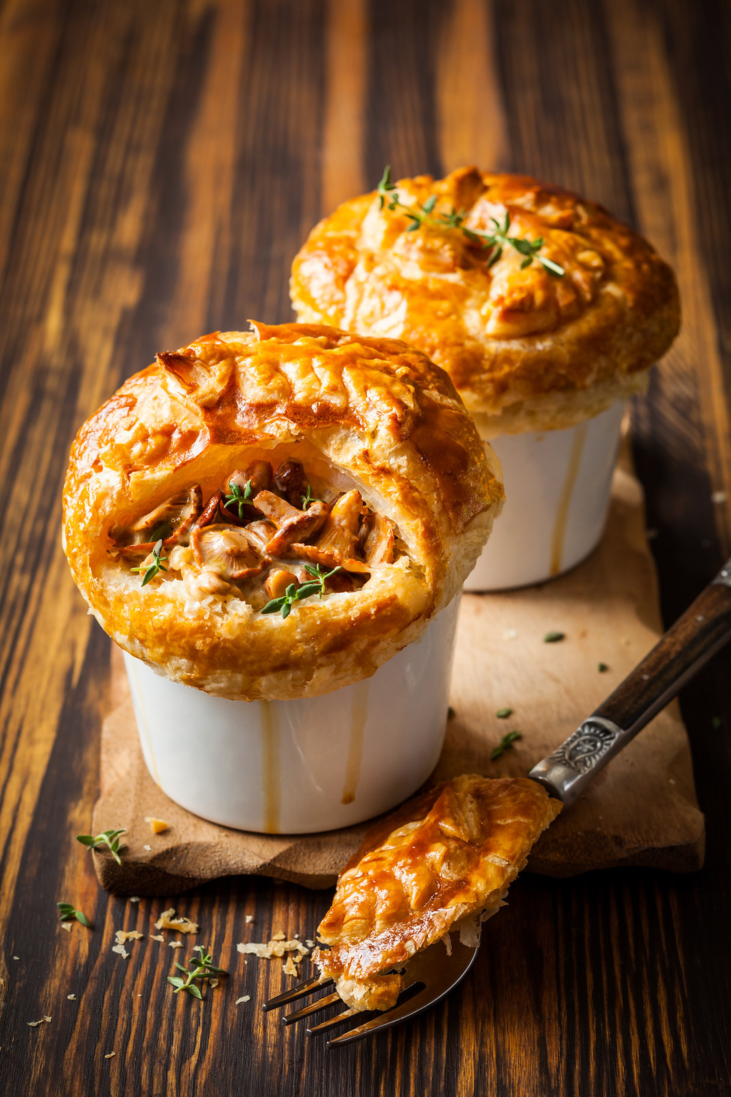 Rich Russian Chicken Pie With Cream Cheese | Tasty Canned Chicken Recipes That Are Easy to Whip | recipes using canned chicken breast