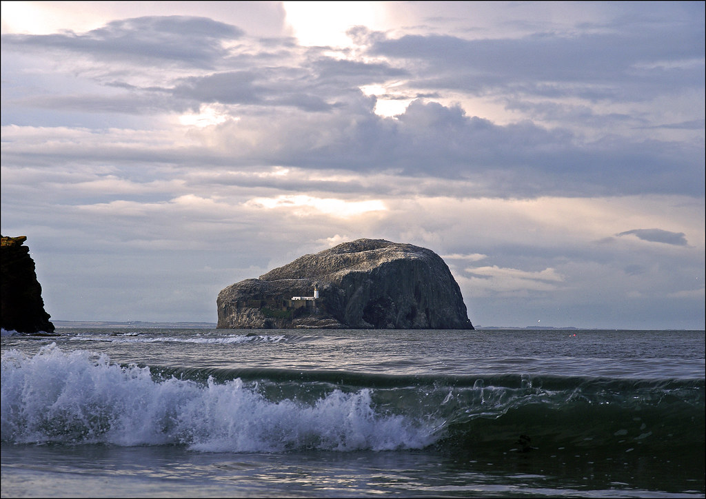 Bass Rock from Seacliff