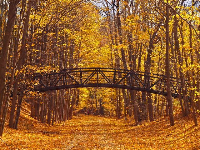 Kent Trails (Explored)