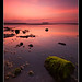 Green & Pink by Jack Wassell