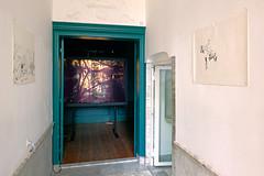 Frankendael_Jasmijn Visser, Zebra - Long Time, 2010 & Krien Clevis, Voorportaal, 2010