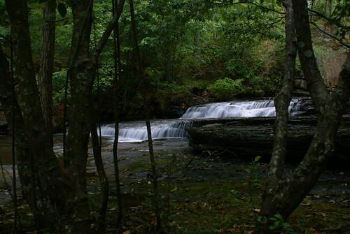lakenicoltuscaloosa alabamatuscaloosaalabamaalaltowaterfallwaterrockstreesgreenleavesdamspillway