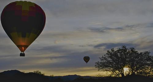 Yountville Balloons