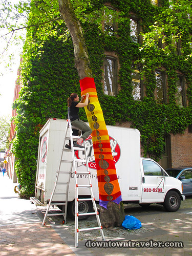 Seattle knit trees public art 8 | by Downtown Traveler