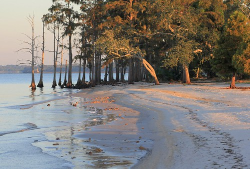 statepark lana beach nature water sunrise catchycolors landscape louisiana mandeville forests gramlich greatphotographers sttammanyparish fontainebleaustatepark fantasticnature dragondaggerphoto canoneosrebelt2i lanagramlich sept82011