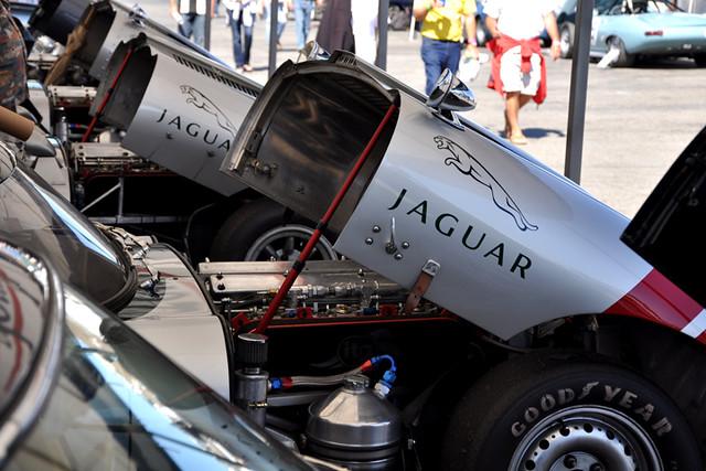 Jaguar bonnets.jpg