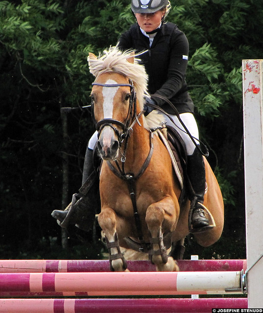20110820_078_138 Pony jumping at Göteborgs Fältrittklubb _ Gothenburg, Sweden _ Solero 33 & Elina Mellberg