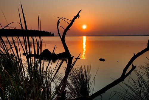 sunrise nhm natcheztrace ngm herowinner rossbarnettereservior npgm