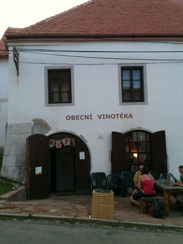 Vineyard @ Pavlov, Moravia