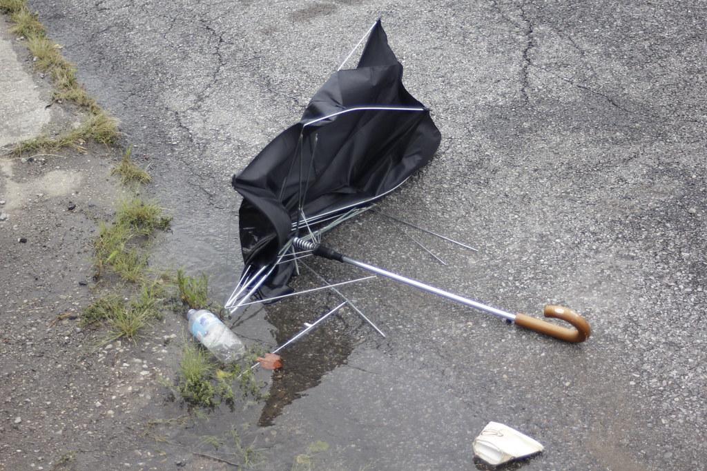 Dead umbrella