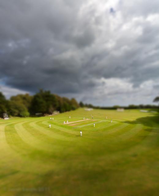 Big weekend, little cricketers