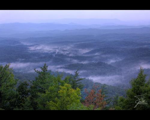 fog canon woods unitedstates tennessee f11 70200 hdr cherohalaskyway cherokeenationalforest canonef70200mmf28lis ef70200mmf28lisusm citico canoneos5dmarkii statehighway165 turkeycreekoverlook