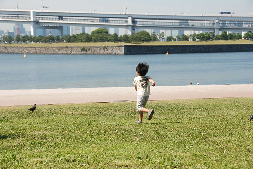 Kid chasing a pigeon | by Maarten1979