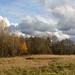 Jalukse noorema kiviaja kalmistu / Tiinamägi