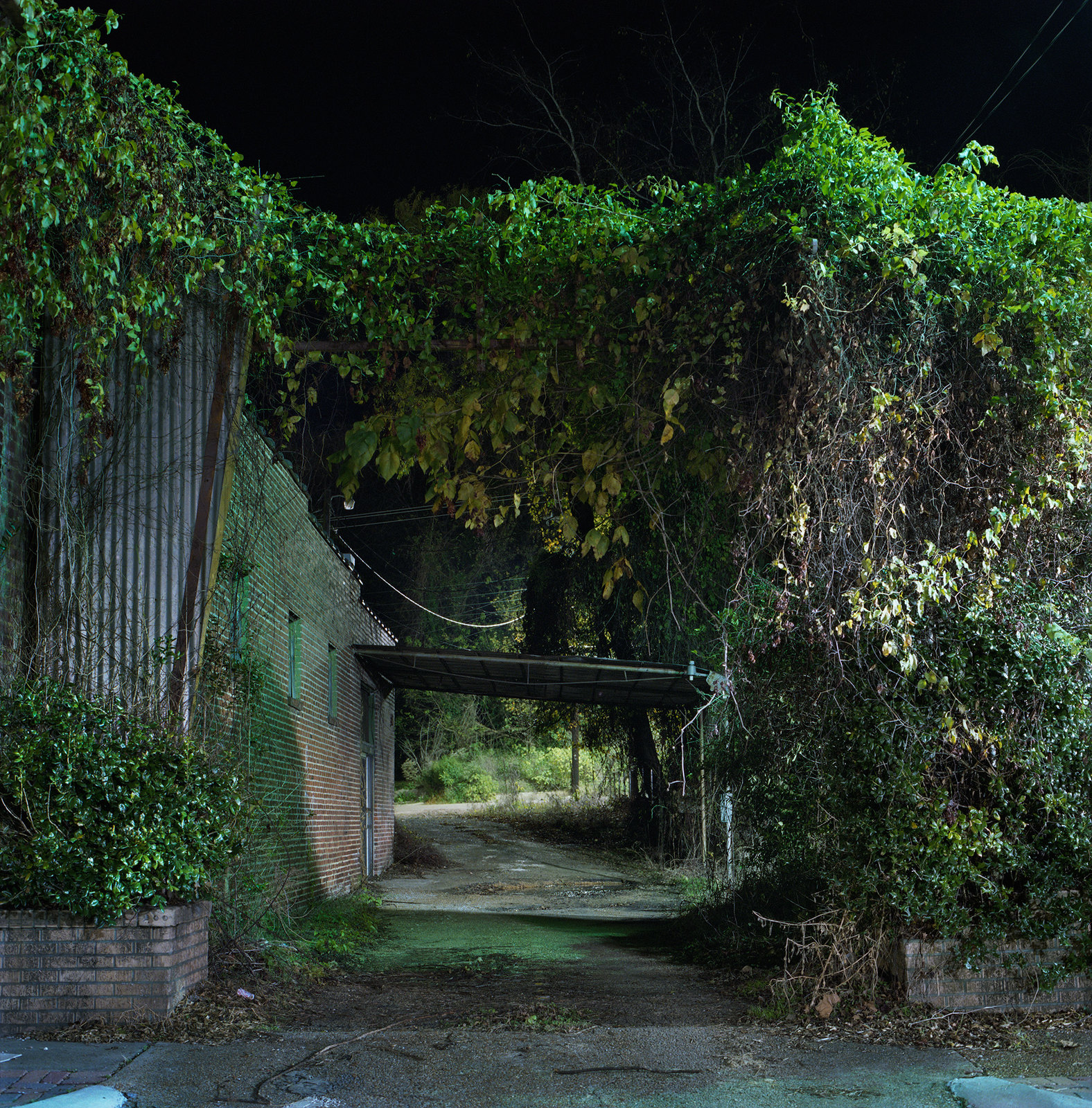 Yazoo Alley