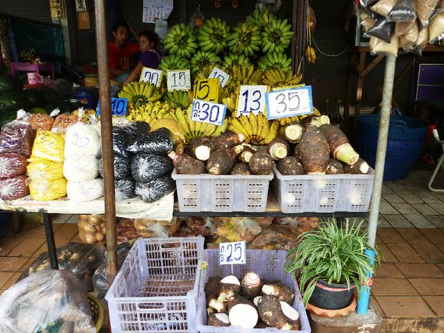 Tuber and banana in market (Khon Kaen)