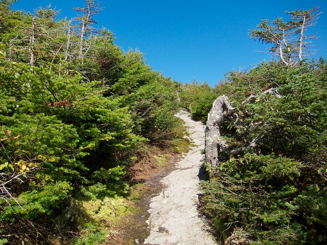 1:28:27 (34%): vermont hiking mtmansfield greenmountains longtrail