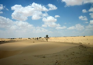 Sinai Scenery   by Prince Roy
