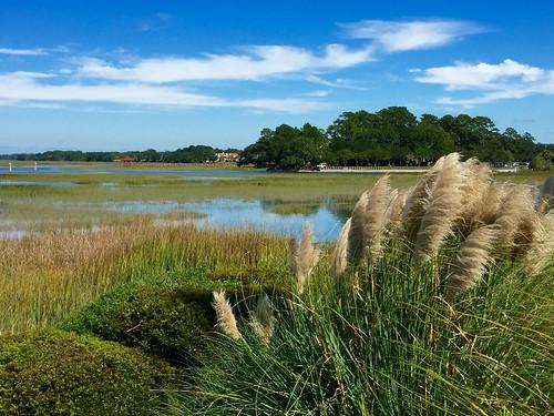 sheltercove broadcreek southcarolina 2015 appleiphone6 texture clouds blue green hiltonheadisland