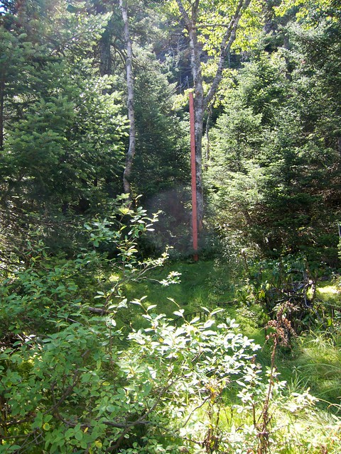 3:04:55 (71%): vermont hiking mtmansfield greenmountains mansfieldautoroad