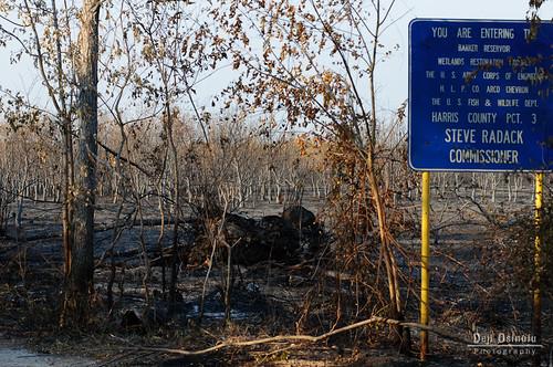 sunrise fire texas drought fires wildfire 9838 georgebushpark barkerreservoirwetlandsrestorationproject 2011texasdrought