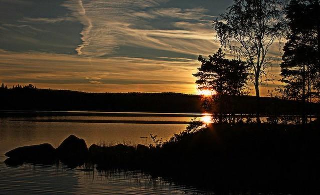 Evening at Glaskogen Nature Reserve