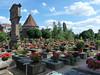 Norimberk, hřbitov, foto: Petr Nejedlý