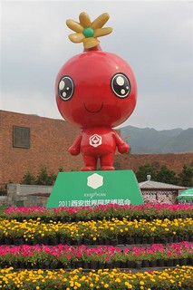 Pomegranate flower is the mascot for Xi'an Expo 2011 in China | by michelle.ongsc