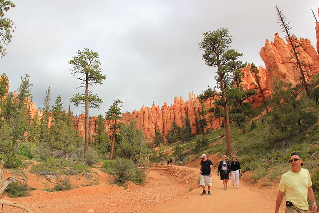 Below the Bryce Canyon