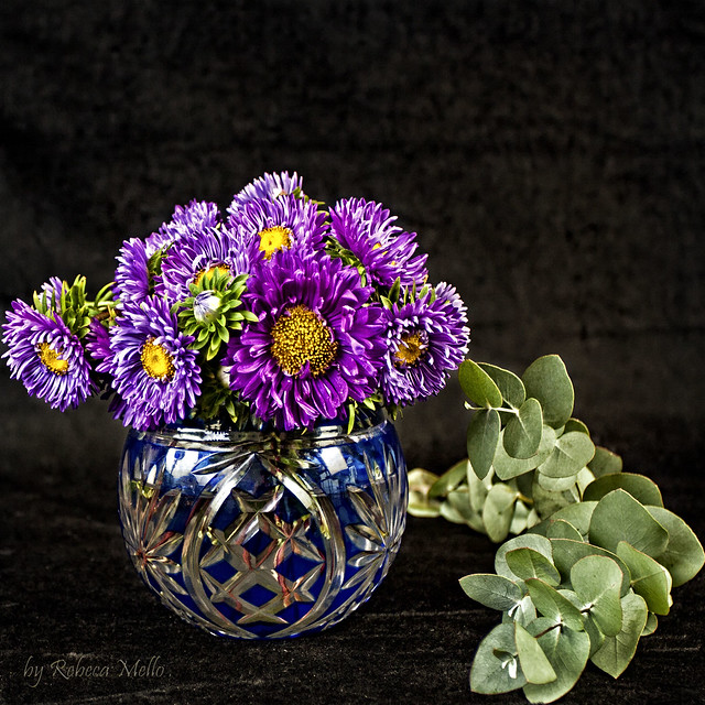 Blue vase , purple daisies..