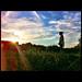 untitled by shotam