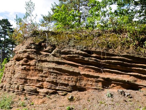 Bunter sandstone cliff, Quatford