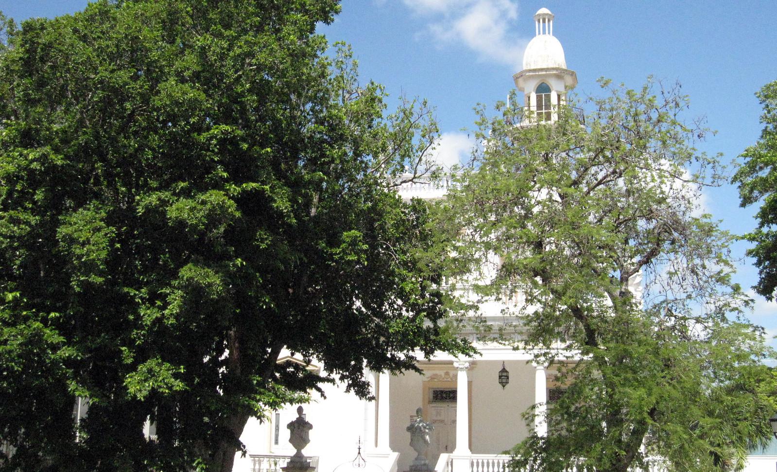 Mérida 37