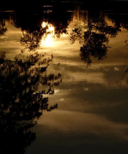 light sunset shadow summer reflection wet water silhouette newjersey flooding nj highlandpark fav10 middlesexcounty donaldsonpark