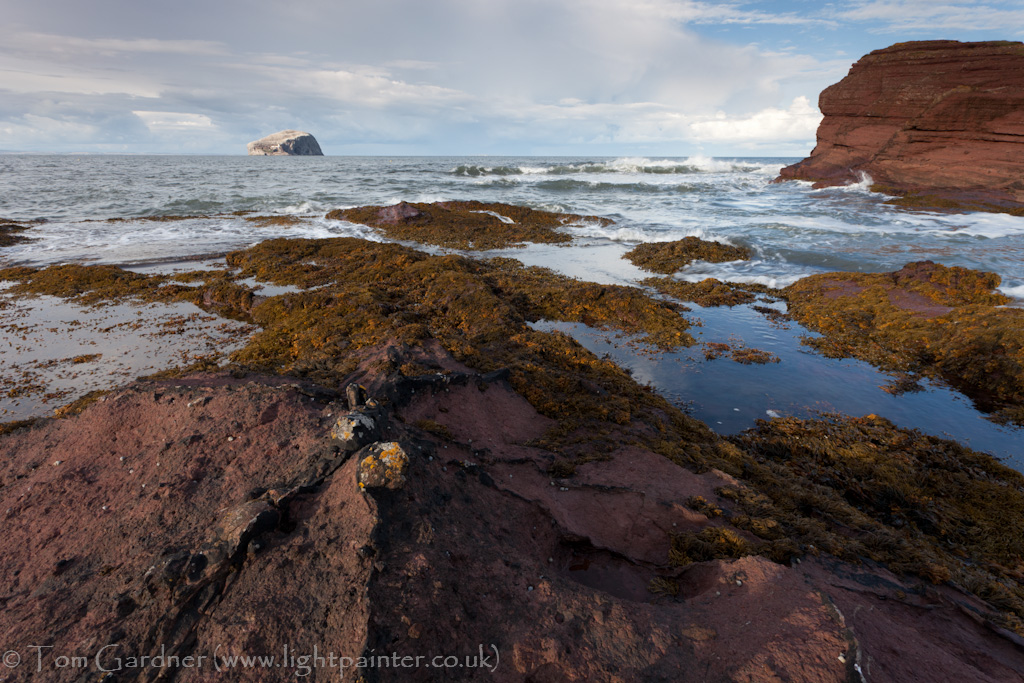Bass Rock from Seacliff, East Lothian, Scotland
