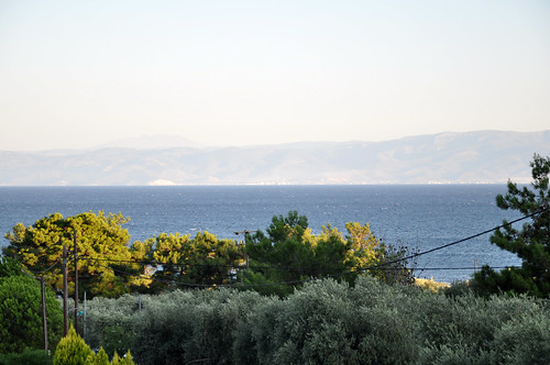 trees sea water view aegean greece olivetrees pachis thassos thasos aegeansea θάσοσ skalarachoniou