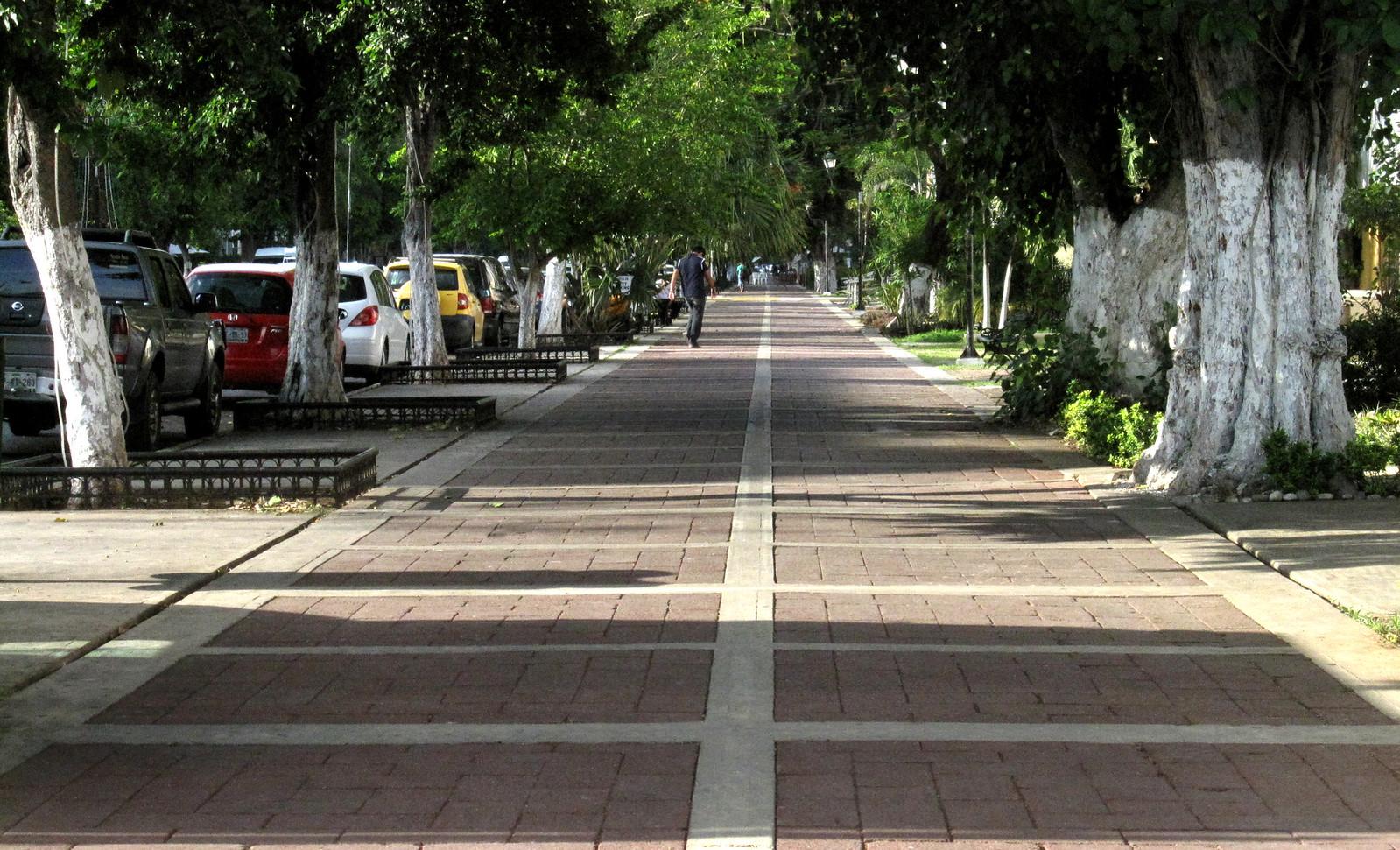 Mérida 62