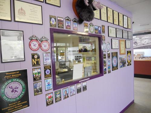Through the window, the Purple Moose office
