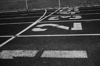 Start Line | by LindsayEnsing