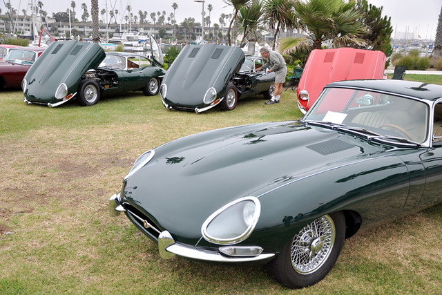 E-Type section