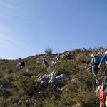 Senda del Valle de Lloreo (Mieres)