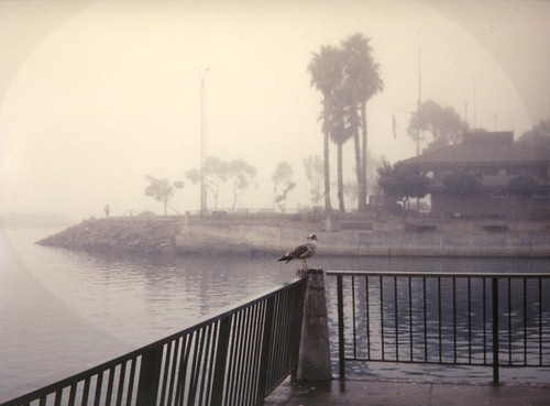 Foggy Morning, Dana Point, CA 1994 | by inkknife_2000 (10.5 million + views)